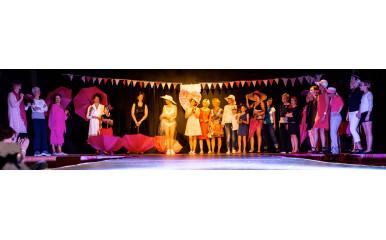 Le mois dernier, sénOvie participait à son 1er défilé pour Octobre Rose à Pins-Justaret.